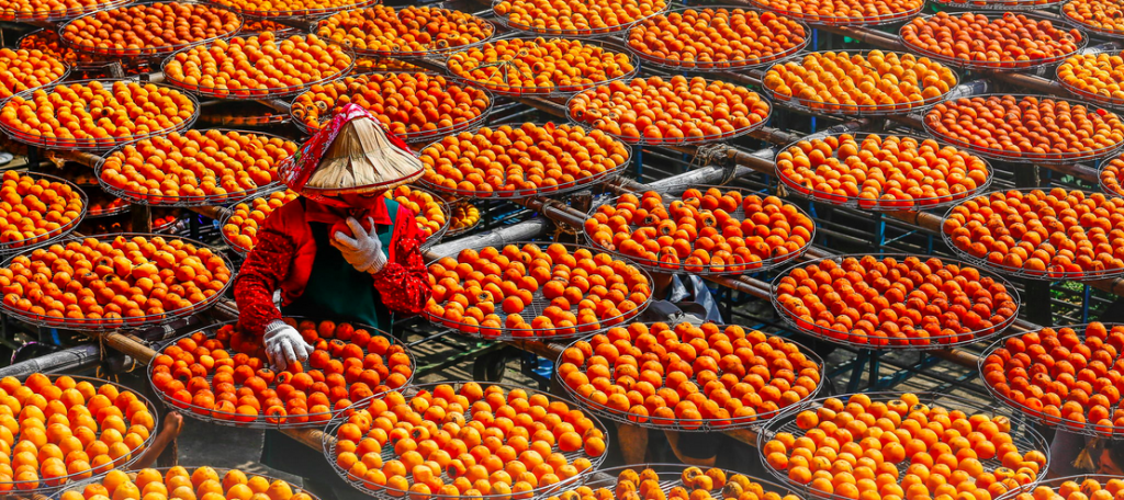 Bild: 柿餅-persimmons
